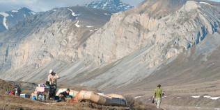 New Arctic National Wildlife Trip with Audubon Alaska!