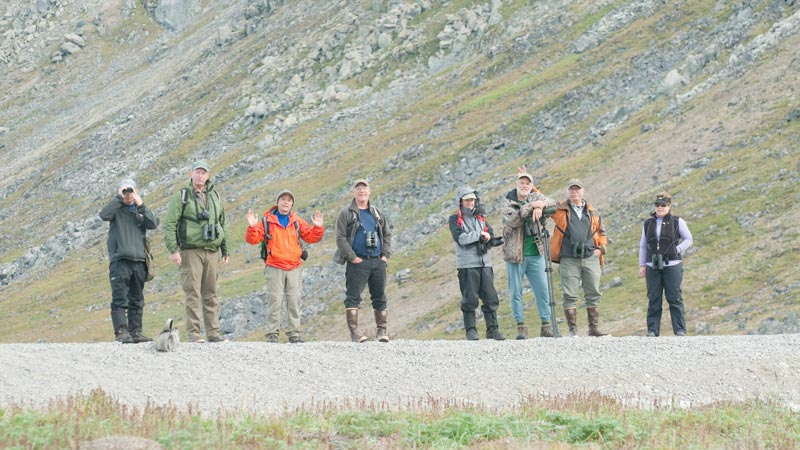 The birders. Photo Aaron Lang.