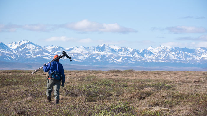 The Bristle-thighed Curlew hike offers stunning views of the Kuzitrin Mountains near Nome, Alaska. Photo Aaron Lang.