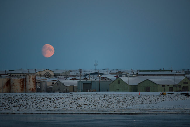 The moon rising over the Nome harbor after a great day of birding. Can you find the King Eider in the photo?