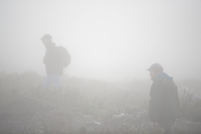 It can be difficult to find birds on the foggy days on Gambell. But we bird nonetheless.