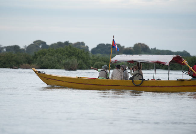 Exploring the Mekong by small boat is a great way to look for Mekong Wagtails and Irrawaddy Dolphins.